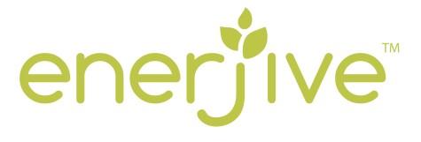 Enerjive Logo