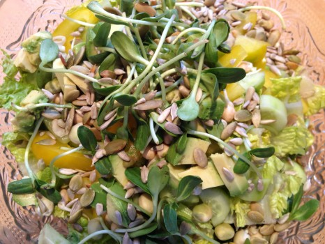 Salad with yellow peppers, sunflower sprouts, cucumbers, avocado and seeds