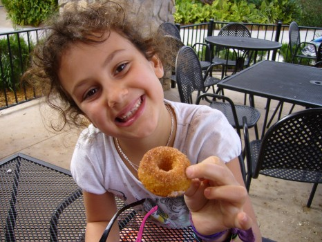 Happiness is...a gluten-free mini cinnamon donut