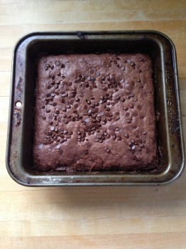 These homemade Coconut Brownies were a huge hit! Gluten free and dairy free!